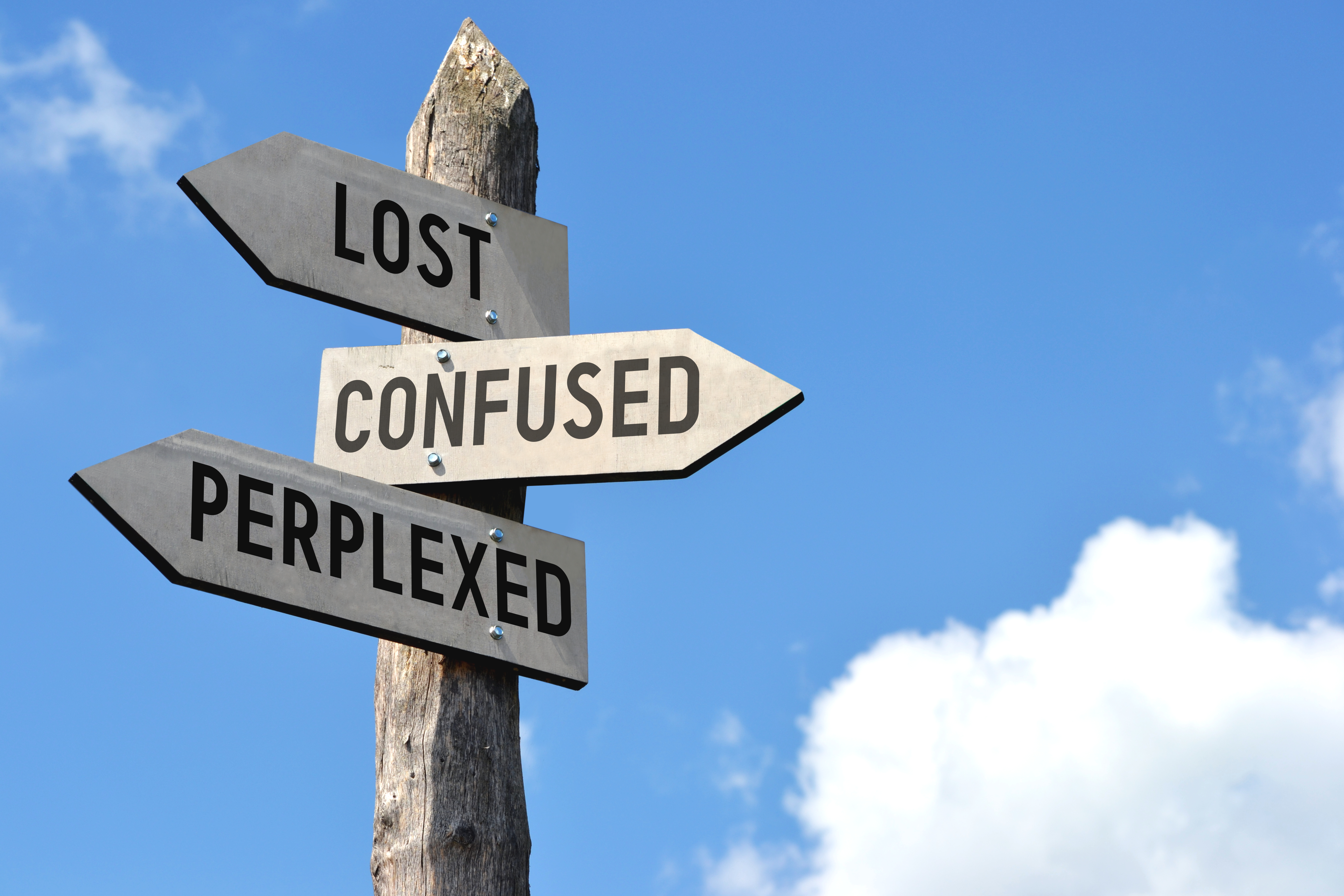 lost confused.jpg