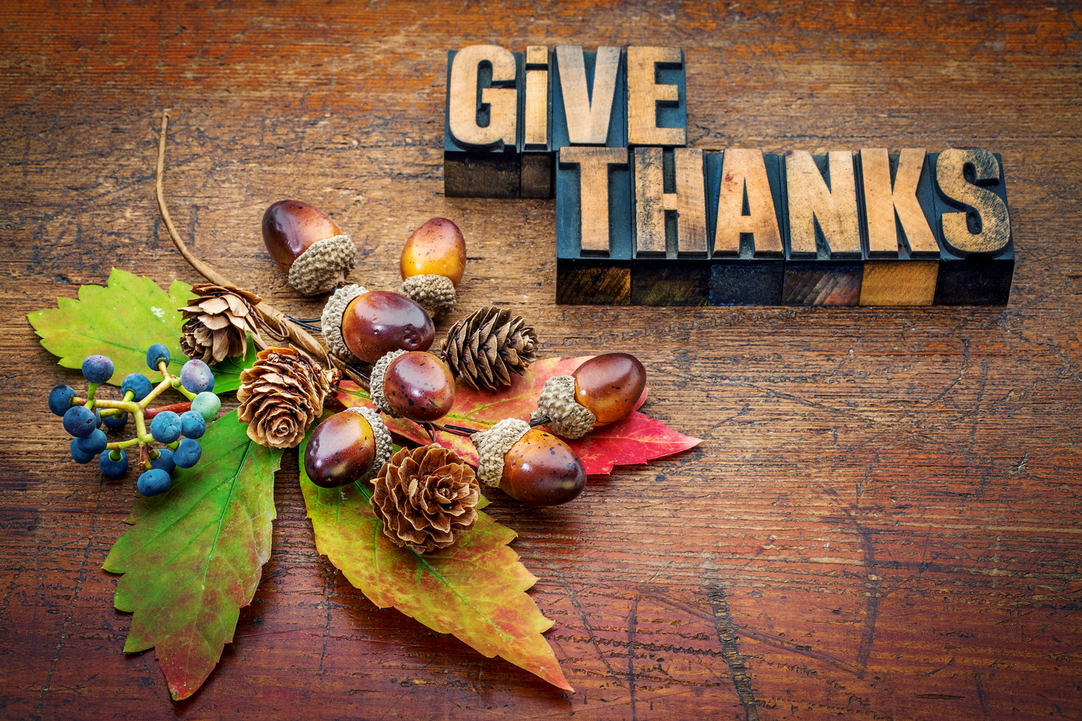 give thanks smaller