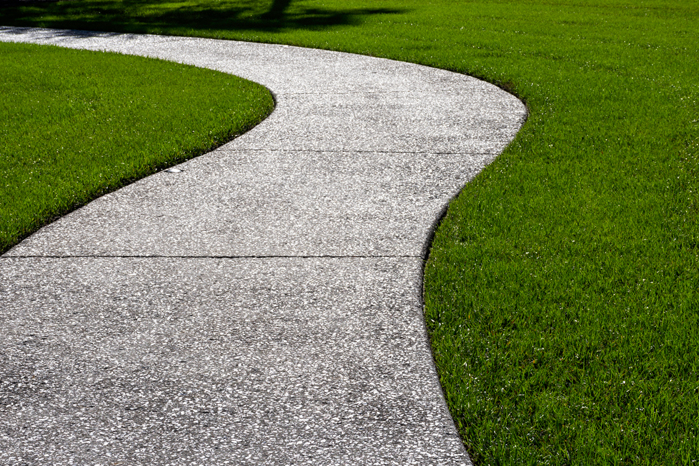 oyster shell walkway small